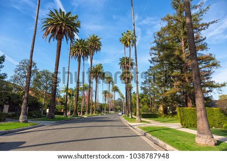 Beverly Hills street with palm trees, Los Angeles #1038787948