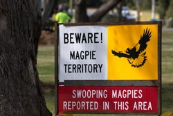 BEWARE! MAGPIE TERRITORY sign warns SWOOPING MAGPIES REPORTED IN THIS AREA in Western Australia