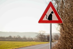 Beware of cat crossing the road sign. Triangle sign on the village road.