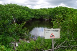 Beware of crocodiles sign in front of  wild lake in tropical Mexico.