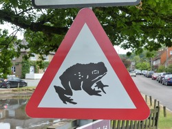 Beware of frogs or toads crossing road sign