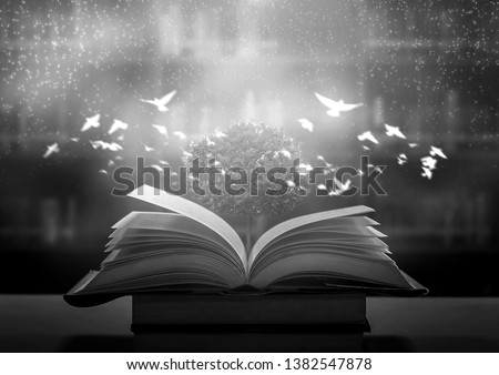 Bewitched Book With Magic Glows In The Darkness