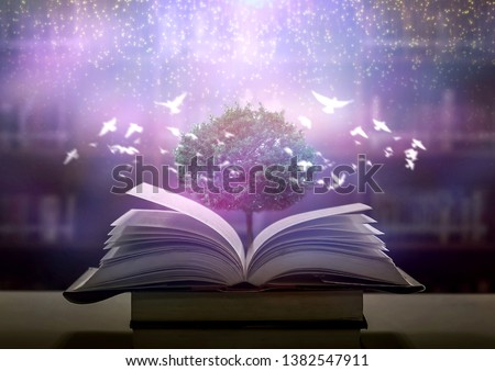 Bewitched Book With Magic Glows In The Darkness  #1382547911