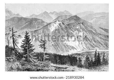 Bialki Valley as viewed from the Tatra Mountains in Tatra, Poland, drawing by G. Vuillier, from a photograph by Dr. Gustave le Bon, vintage engraved illustration. Le Tour du Monde, Travel Journal 1881 Photo stock ©