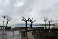 Biarritz panorama. Lighthouse in cliff in the bay. Grey sky and rainy winter weather over the atlantic ocean. Dead tree silhouettes and lonely bench in the boardwalk, Pays Basque, france.