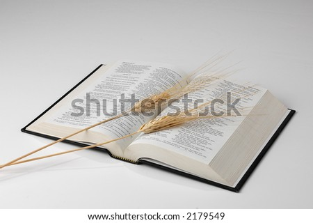 Bible and Wheat on neutral background