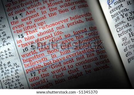 Bible opened to John 3:16