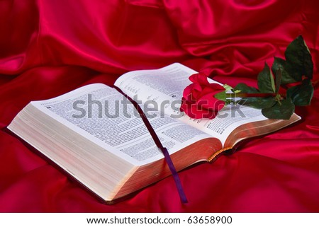 Bible snuggled in with red silk material while red rose is laying across it.