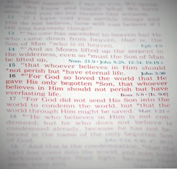 Bible Verse John 3.16