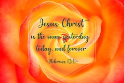 Bible verse saying that Jesus Christ is the same yesterday, today and forever, written on rose background
