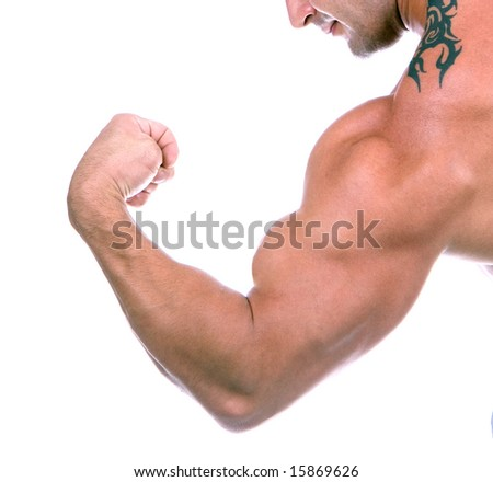 Bicep close up , isolated on white