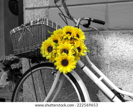 Bicycle decorated with sunflowers. BW image #222569653