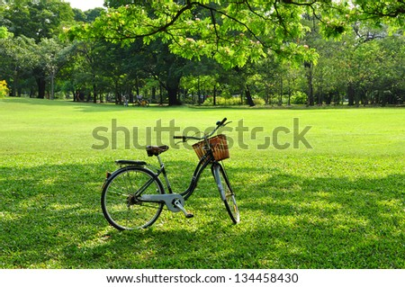 Bicycle in the Park - Shutterstock ID 134458430