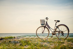 Bicycle parked in paradise island