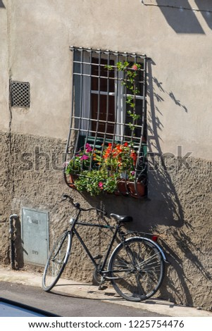 Bicycle parked underneath a barred window with flowers in a windowbox in Lucca, Italy