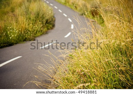 Bicycle path meandering through a meadow, focus on the grass in foreground