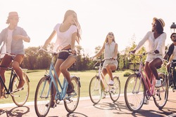 Bicycle ride with friends. Group of young people riding bicycles and looking happy