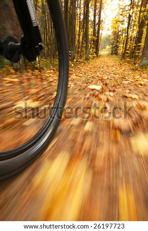 Stock Photo Bicycle riding on country road. Autumn scene, low angle, motion blur.