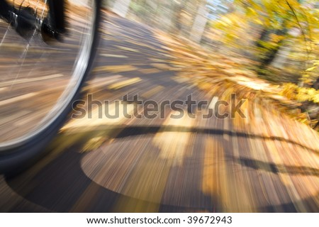 Bicycle riding on country road. Autumn scene, low angle, motion blur.