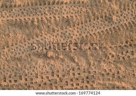 Bicycle tire tracks on dirt