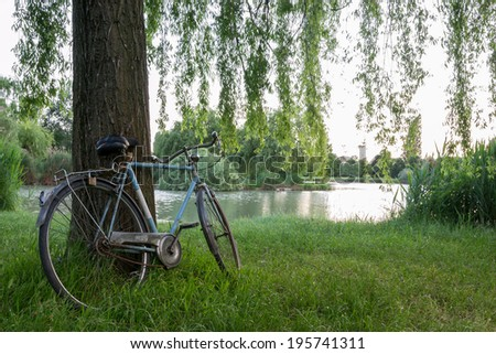 Bicycle under a tree in an italian garden - Shutterstock ID 195741311