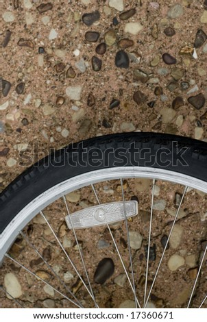 Bicycle wheel laying on a street.