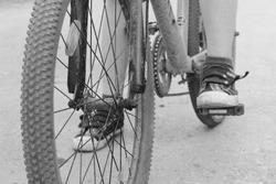 Bicycle wheel, spokes. Bike.Mountain bike. Black and white wheel with spokes.Sport.