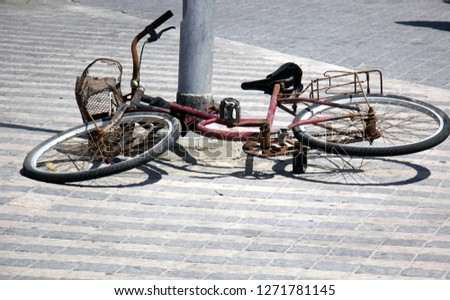 Bicycle - wheeled vehicle #1271781145