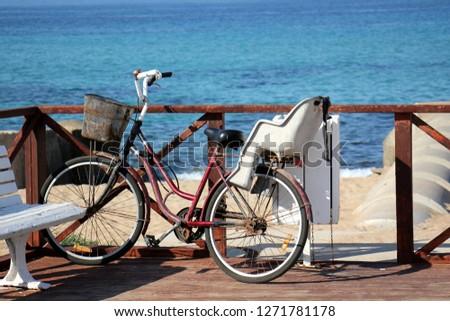 Bicycle - wheeled vehicle #1271781178