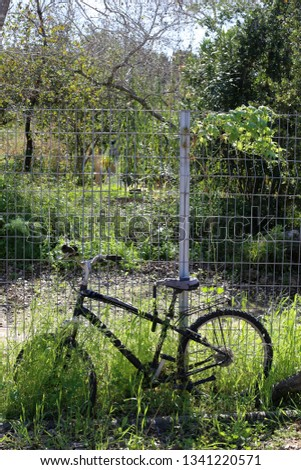 Bicycle - wheeled vehicle #1341220571