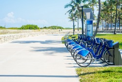 Bicycles for hire in the park of the resort city against the backdrop of palm trees and sand