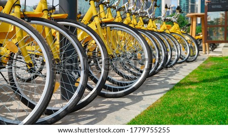 Bicycles parked in row at a rent a bike shop in a park. bike rent stock photo