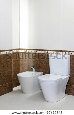 Bidet and toilet seat in new bathroom