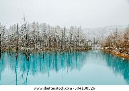Pond Images | Download Free Images