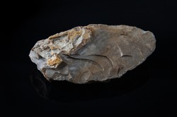 bifacial backed knife. Knife carved in flint from the Middle Paleolithic, on black background