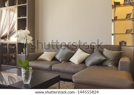 Big and comfortable living room with sofa in luxury mansion