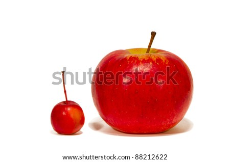 big and small red apples isolated on white - stock photo