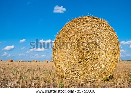 Big bales of straw in a meadow - stock photo
