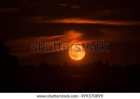Big Blood Moon #499370899