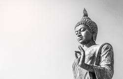 Big buddha statue  at phutthaMonthon background