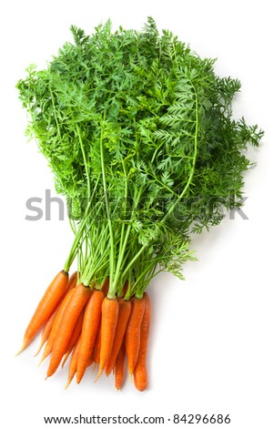 Big bunch of fresh carrots with green tops. Isolated on white.