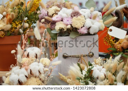 Big bunches of cotton standing in vases and hand made wooden wreaths by the window at the florist shop, #1423072808