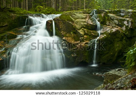 big cascade in green forest