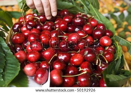 big cherries on basket
