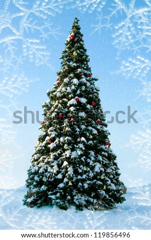 Big Christmas tree on snow, background of blue sky