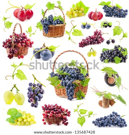 Big Collection Of Grapes Isolated On White Background