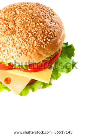 Big colorful hamburger isolated on white