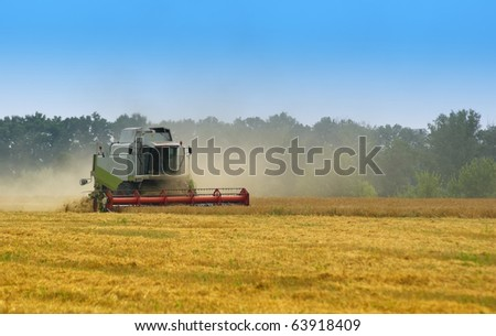 Big  combine working on the Wheat field