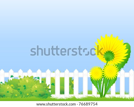 Big dandelion blooming by the fence in the thickets young bush - stock photo