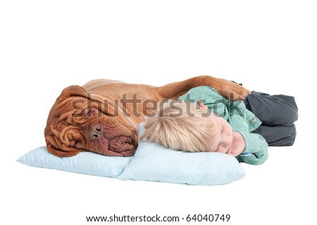 Big dogue de bordeaux and small boy sleeping on the floor